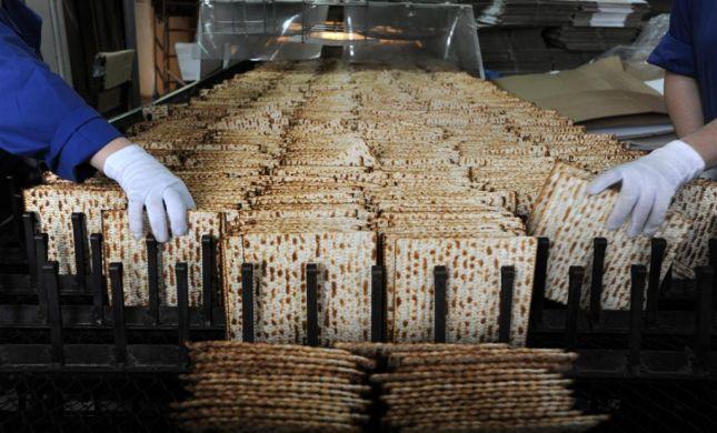 הירושלמים ישברו שיא גינס: המצה הכי גדולה
