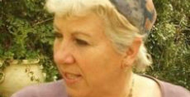 """סוף למאבק? פשרה בין ד""""ר קהת למכללת אורות ישראל"""
