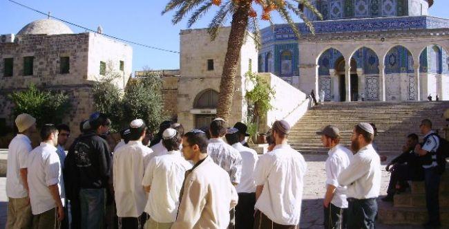 הערבים בלחץ: הוכפל מספר היהודים העולים להר הבית
