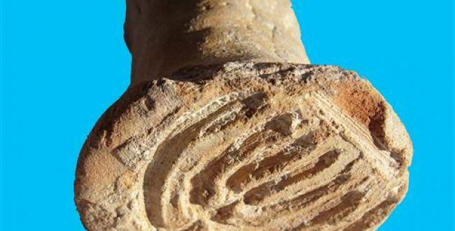 """הממצא הארכאולוגי (הנוסף) שסותר את מנהג חב""""ד"""