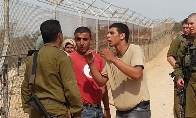 זעם באיתמר: פלסטינים מוסקים זיתים ליד בית פוגל