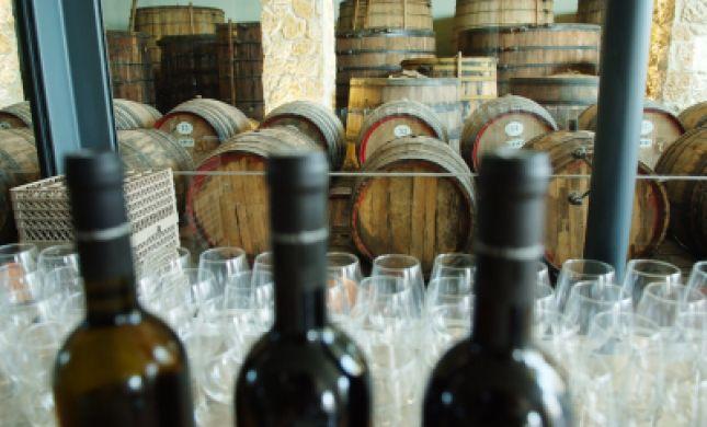 היענות עצומה לרכישת היין של צביקי סטרוק