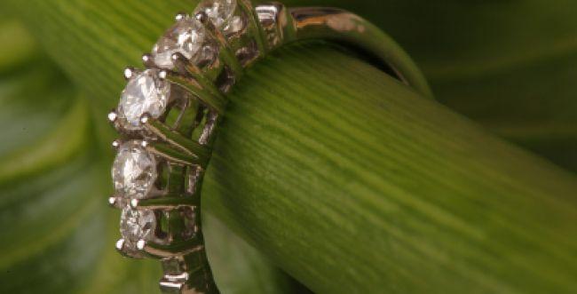 השוטרים החזירו לתיירת את טבעת היהלום היקרה שגנבו בדואים