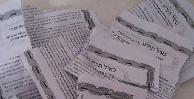 הקרע במגזר החרדי: אברכים השחיתו חידושי תורה של הרב שטיינמן