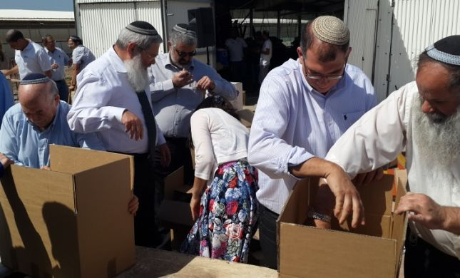 """חברי סיעת הבית היהודי ארזו חבילות """"קמחא דפסחא"""""""