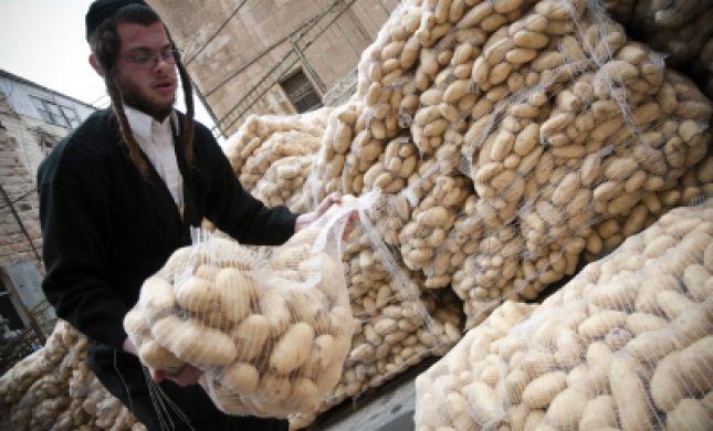 בגלל המחסור: לפיד אישר יבוא נוסף של 6,000 טון תפוחי אדמה