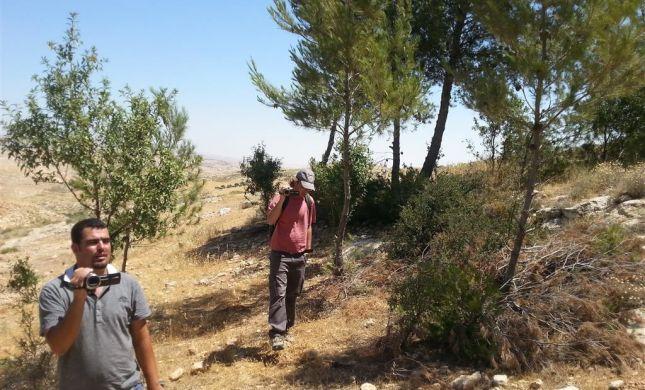 מנותקים: פעילי שמאל בפרובוקציה באביגיל