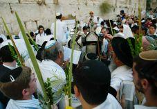 אחדות ארבעת המינים, אחדות עם ישראל
