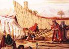 """בשבילך ציורי תנ""""ך פרשת נח: עד כמה נח היה צדיק?"""