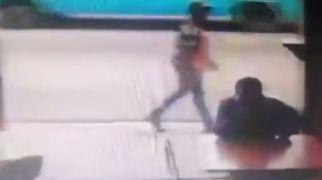 רץ ברשת, תרבות צפו: עונשו של גנב טיפש
