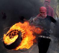 חדשות, חדשות פוליטי מדיני שלילת אזרחות וגירוש לעזה: תכנית לוין למיגור הטרור