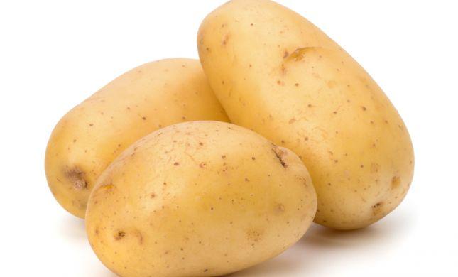 איזה תפוחי אדמה לבחור ללביבות וצ'יפס?