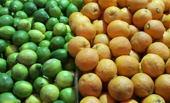 חשש ערלה בפירות חורף: הרשימה המלאה