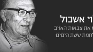 """בחירות 2015, רץ ברשת, תרבות בתו של לוי אשכול: """"הליכוד מסלף עובדות"""""""