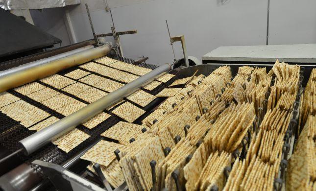 """פסח תשע""""ה: בעולם היהודי אוכלים יותר מצות"""