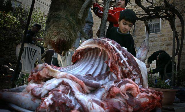 אכילת בשר היא בסך הכל תאווה ייצרית, אז למה?