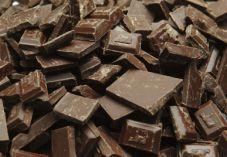 """הרב ליאור: """"לברך על שוקולד בורא פרי העץ"""""""