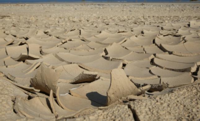 פרשת 'בשלח': לחשוף את פיסת האדמה