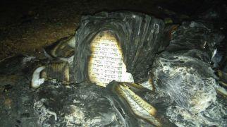 חדשות המגזר, חדשות קורה עכשיו במגזר מזעזע: ערבים הציתו בית כנסת ליד כרמי צור