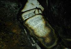 השייח' אבו עלי: מגנה את שריפת בית הכנסת