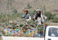 עשרת השבטים: סבא שלי סיפר לי שהם באפגניסטן