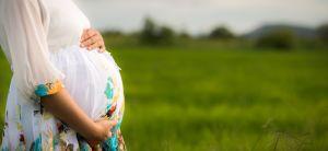 יהדות, סרוגות, על סדר היום תרומת זרע לרווקה - שאלה של מדיניות הלכתית