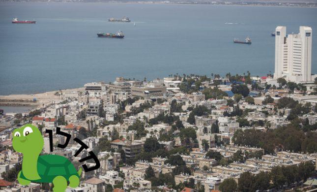 הכר את השכונה הסרוגה - נווה שאנן בחיפה