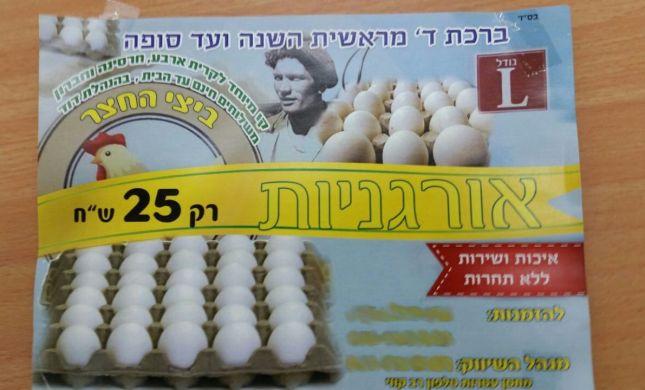 הביצים האורגניות בקרית ארבע הוברחו מהרשות