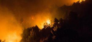 חדשות, חדשות בארץ האש נעצרה בתיקי הר הבית • עדות מתוך הלהבות