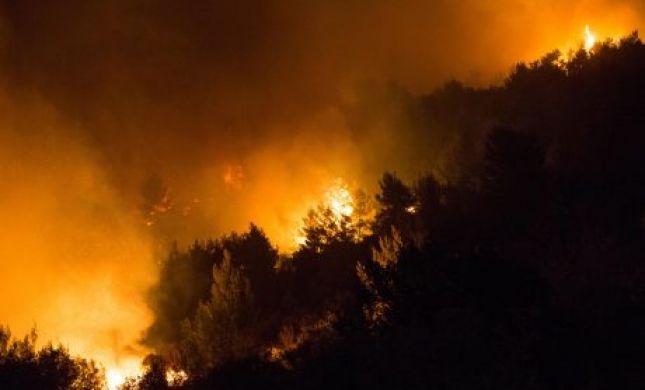 האש נעצרה בתיקי הר הבית • עדות מתוך הלהבות