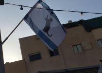 'בזוי ופוגע': דגלי ישראל עם חתול שחור