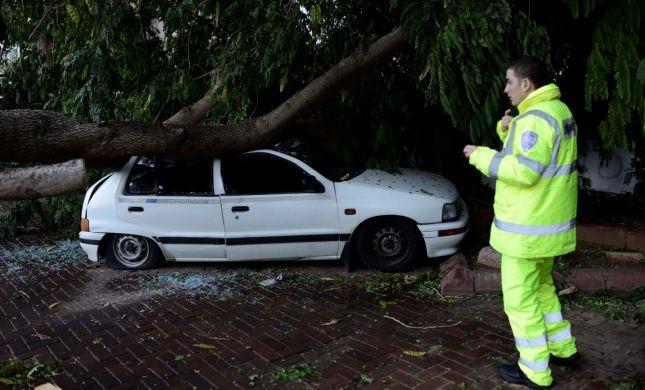 הכינו עצמכם לסופה: מדריך לנפגעי הסערה