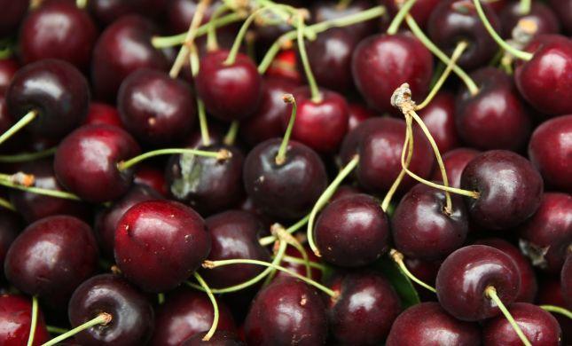 """שו""""ת: ברכת שהחיינו על פרי חדש בחוץ לארץ"""