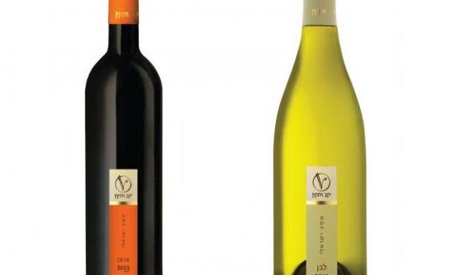 אור רייכרט לוגם: שני הבקבוקים האחרונים לסדר