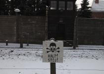 שואה וגבורה: שני סוגי קידוש השם היו בשואה
