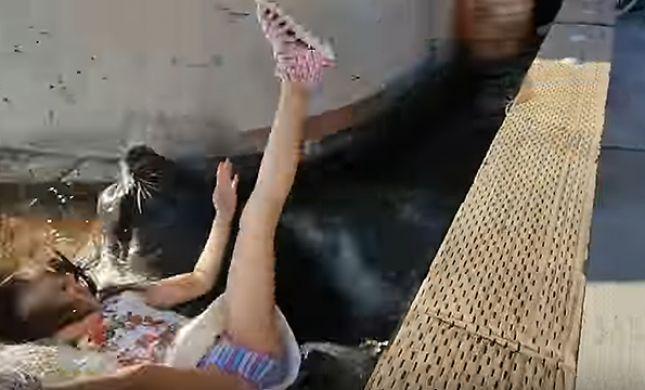 אימה ברציף: אריה ים משך ילדה לתוך המים. צפו
