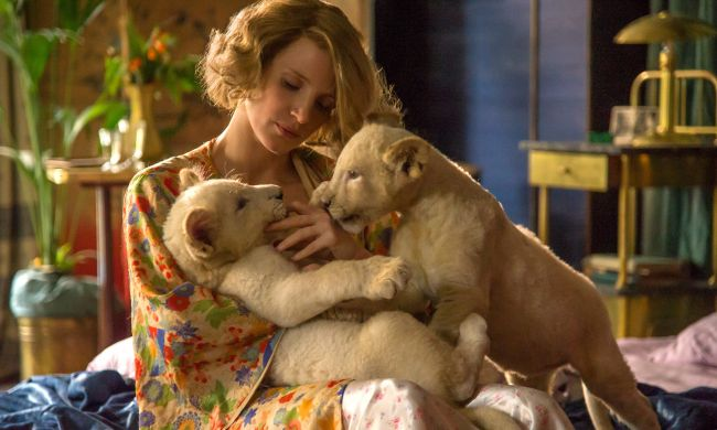 ביקורת סרטים: אשתו של שומר גן החיות • סרט מומלץ בחום