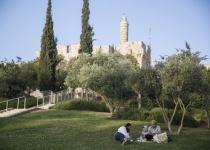 בילוי חינם: בירה וסרט בפארק גיא בן הינום בירושלים