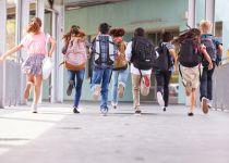 קורע: משוב בית הספר שמשגע את הרשת
