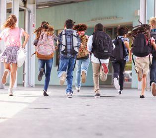 ויראלי קורע: משוב בית הספר שמשגע את הרשת