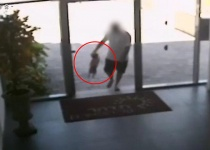 המצלמות חשפו: התעללות קשה בכלב. צפו