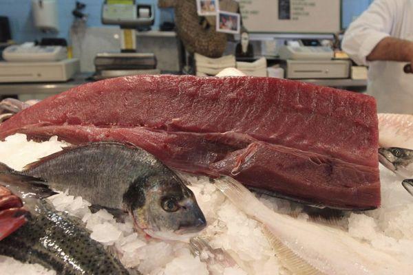 קשה לצפייה: הדבר הכי מפחיד בדגים טריים קרה