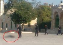מתקפת טרור במתחם הר הבית. צפו בתיעוד רגעי הירי