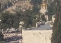 צפו: שוטרים מסירים את דגל פלסטין מהר הבית