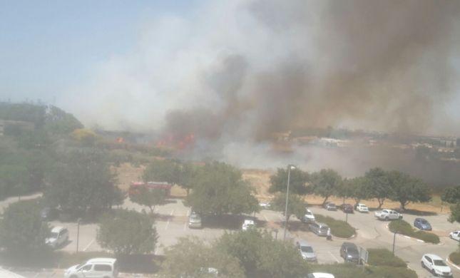 שריפת קוצים ענקית סמוך למטה משרד החקלאות