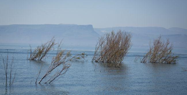 """ראש רשות המים: """"סכר דגניה עוד ייפתח שוב"""""""