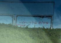 גרפיטי מסית נגד איילת שקד