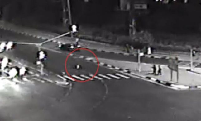 לא ייאמן: נדרס על ידי רכב שעבר באדום והתחיל לרוץ