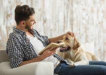 מחקר קבע: הדבר שאנשים אוהבים יותר מבני אדם