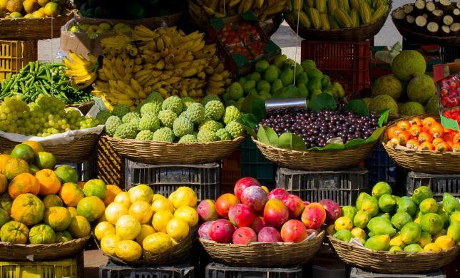 היתרונות הבריאותיים של הפירות